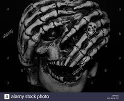 Halloween Skeleton Faces by Halloween Skeleton Face Stock Photo Royalty Free Image 31775913