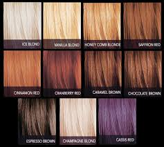 sebastian cellophanes colors jazzing cellophane 80 toasted chestnut of cellophane hair color