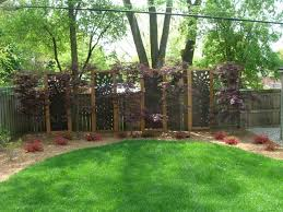 appealing small backyard landscaping ideas for privacy images
