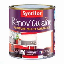 peinture pour placard de cuisine comment peindre un meuble en bois unique peinture blanche pour