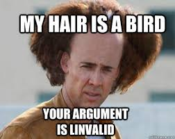 Crazy Bird Meme - my hair is a bird your argument is linvalid crazy nicolas cage
