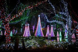 christmas lights columbus columbus zoo columbus wildlights