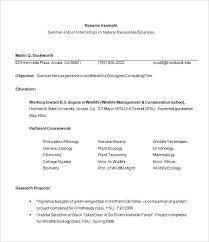 curriculum vitae templates pdf sample of resume format example resume format for internship free