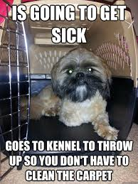 Sick Puppy Meme - good guy puppy dog memes quickmeme
