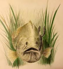 putting passion to paper u2014 sweetwater fishing blog