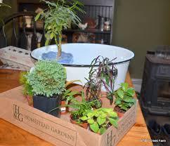 Indoor Garden Supplies - container gardens for fall and winter indoor growing timber