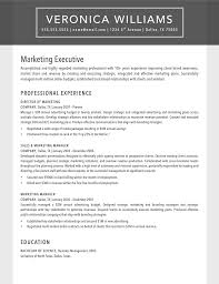 Resume Timeline Template Essays American History Esl Masters Essay Writers Site For Masters
