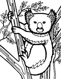 koala bear looks like wolverine coloring page koala bear looks