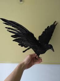 black birds for halloween online get cheap black birds aliexpress com alibaba group