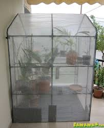 my greenhouse is getting solar heating bananas org
