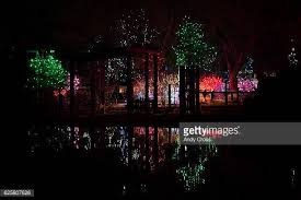 denver zoo lights hours the denver zoo stock photos and pictures getty images