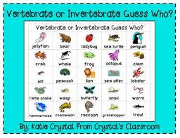 vertebrate or invertebrate guess who