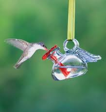to attract hummingbirds