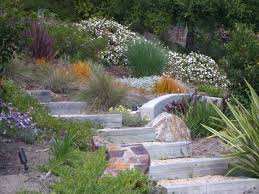 Tall Grass Landscaping by Landscaping Hillside Ideas Landscape Mediterranean With Stone