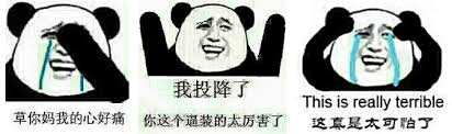 Meme In Chinese - a field guide to china s most indispensible meme motherboard