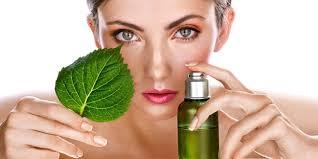 tanaman obat penggunaan tanaman obat minyak bunga lavender