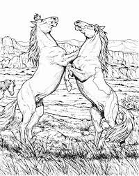 free printable wild horse coloring pages periodic tables