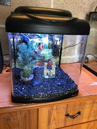 1 ft fish tank 26l set up with light lid filter gravel