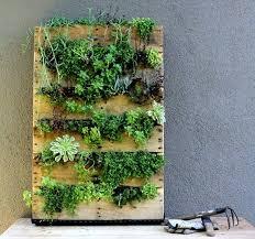 indoor wall herb garden diy remarkable design wall hanging indoor