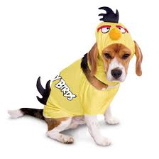 top 10 dog costumes you can buy at the store fuzzy today