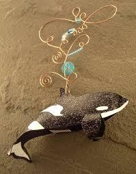 rainbow orca designs