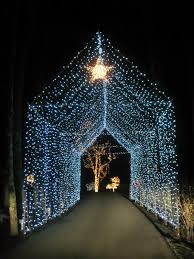 Reid Park Zoo Christmas Lights by The Hawkins Family July 2014