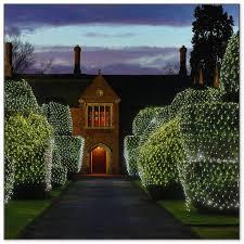 lights for hedges