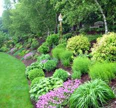Backyard Lawn Ideas Backyard Landscaping Slope The Effective Landscape Ideas For