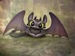40 toothless images hiccup train dragon