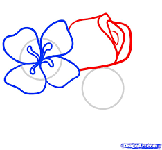how to draw easy flowers step by step flowers pop culture free
