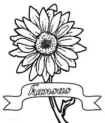 plant flower coloring pages biology book cell worksheet answers