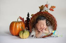 thanksgiving newborn photography check out more baby