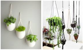 plant wall hangers indoor terrarium design amusing wall mounted pots for plants wall mounted