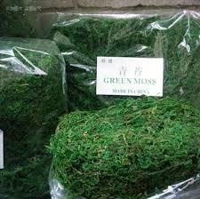 Moss Vase Filler Aliexpress Com Buy 30g Bag Keep Dry Real Green Moss Decorative