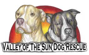 american pitbull terrier merchandise about us valley of the sun dog rescue