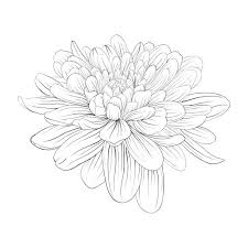 19 advanced nature coloring pages images