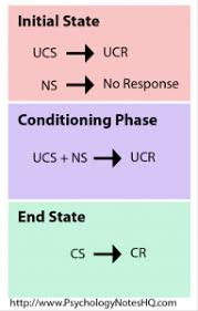 educational psychology notes classical conditioning