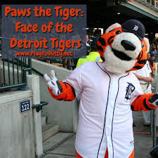 paws the tiger face of the detroit tigers playful kitty