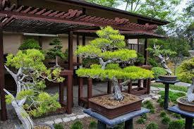 japanese garden how to arrange a japanese garden choosing the right plants home