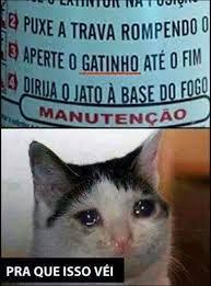 Manu Meme - q issu manu meme by james doge memedroid