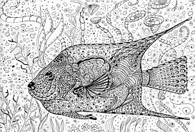 coloring pages for adults online get this online summer printable coloring pages for adults 63121