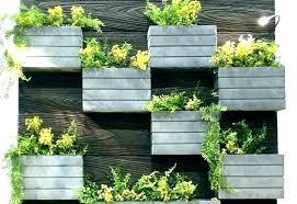 indoor wall garden wall garden planters create your own vertical garden indoor wall