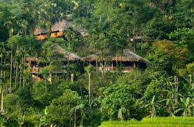 agoda vietnam best price on puluong retreat in thanh hóa reviews