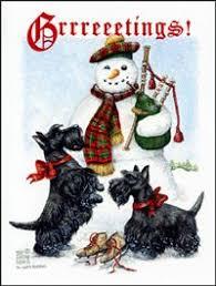 2615 best scottish terrier images on scottish terriers
