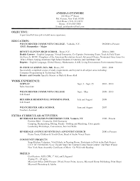 Basic Resume Objective Examples by Paramedic Resume Objective Resume For Your Job Application