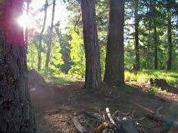 Mt Lemmon Hiking Trails Map Best Campground Mount Lemmon General Outdoors