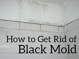 How To Get Rid Of Kitchen Sink Odor How To Get Rid Of Black Mold The Easy And Cheap Way Dengarden