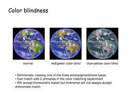 Blue Green Color Blindness Colourblind Board Game Designers Forum
