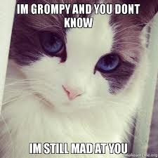 You Still Mad Meme - im grompy and you dont know im still mad at you mad at you
