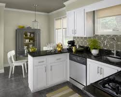 ideas for kitchen colours kitchen color ideas with white cabinets size of large